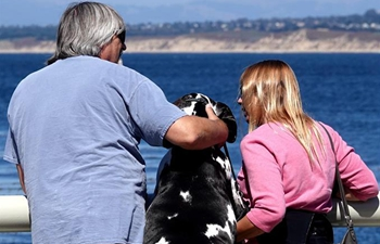 People with dog view seascape in Monterey, U.S.